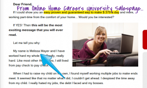 The Online Home Careers University Program is Available In Lansing.clipular (1)