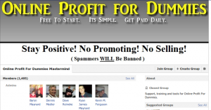 Online Profit For Dummies Mastermind.clipular