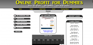 online profit for dummies