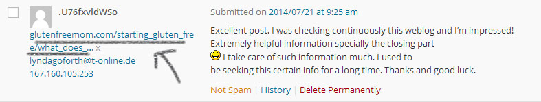 blog comment spam example 4