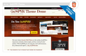 (in)SPYR theme studiopress