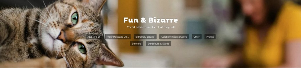 fiverr fun and bizarre category