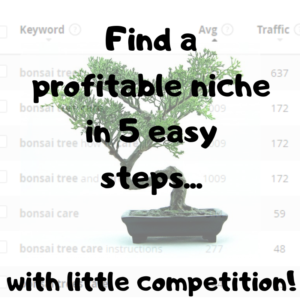How to Find a Profitable Niche with Little Competition