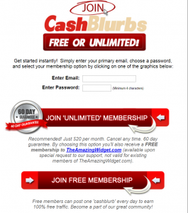 Cashblurbs Review – Does it Work?
